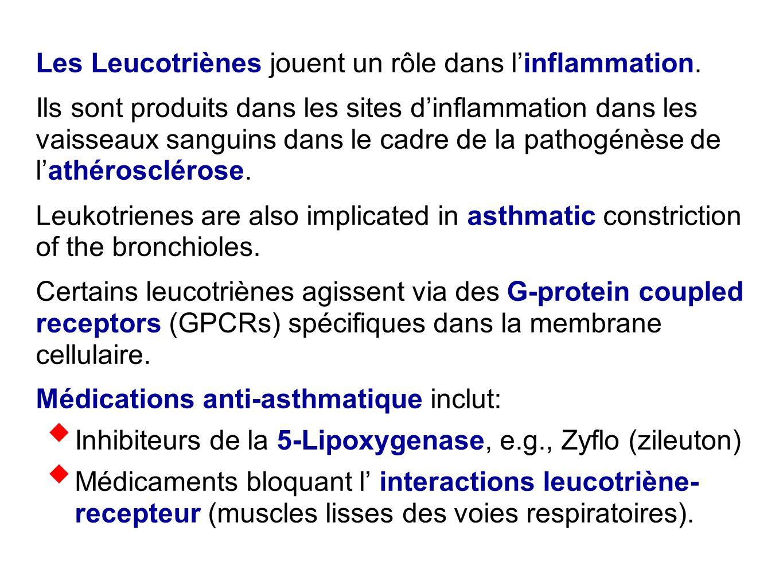 Les Leucotriènes jouent un rôle dans l'inflammation. Ils sont produits dans les sites d'inflammation dans les vaisseaux sanguins dans le cadre de la p