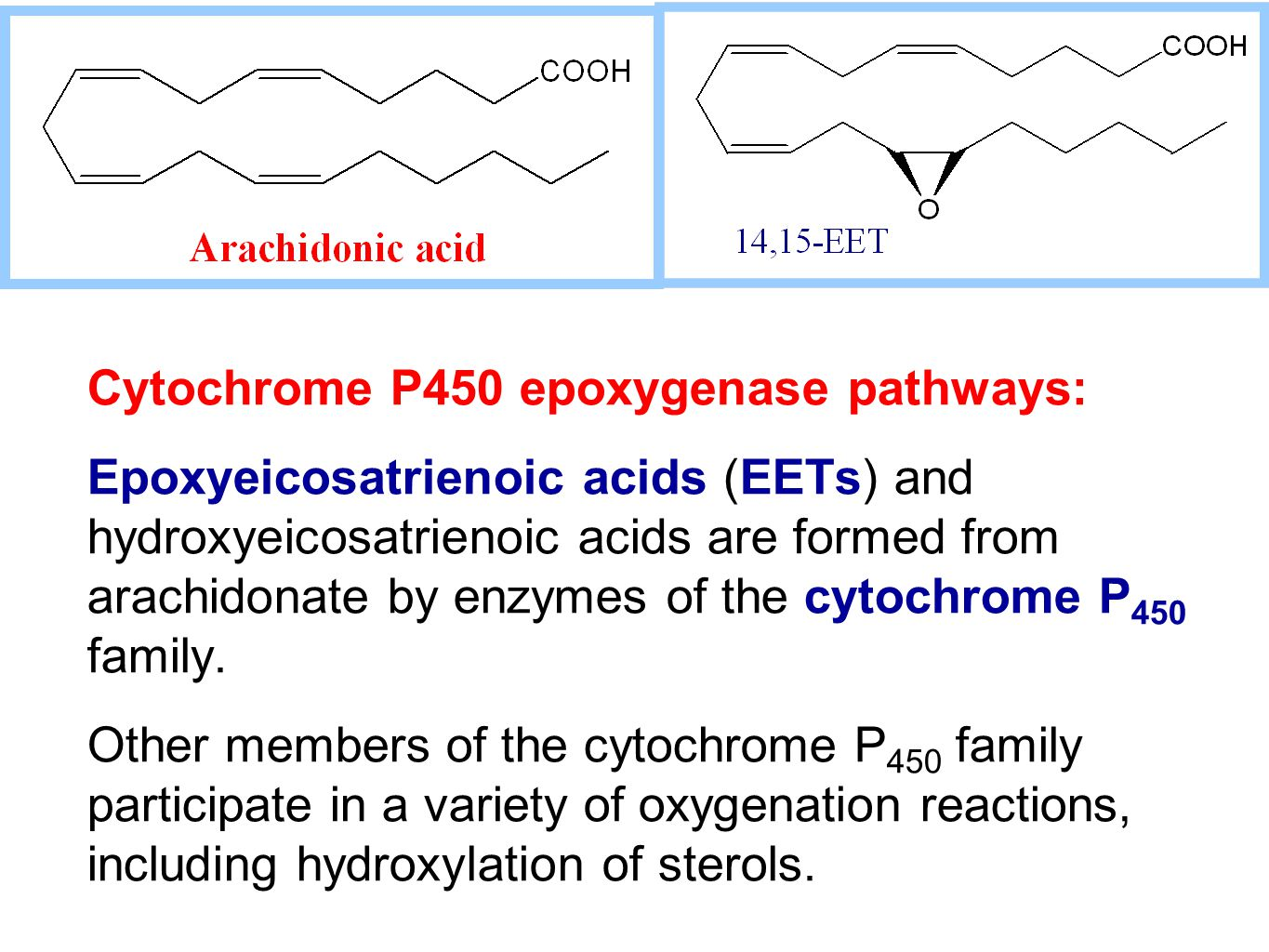 Cytochrome P450 epoxygenase pathways: Epoxyeicosatrienoic acids (EETs) and hydroxyeicosatrienoic acids are formed from arachidonate by enzymes of the cytochrome P 450 family.