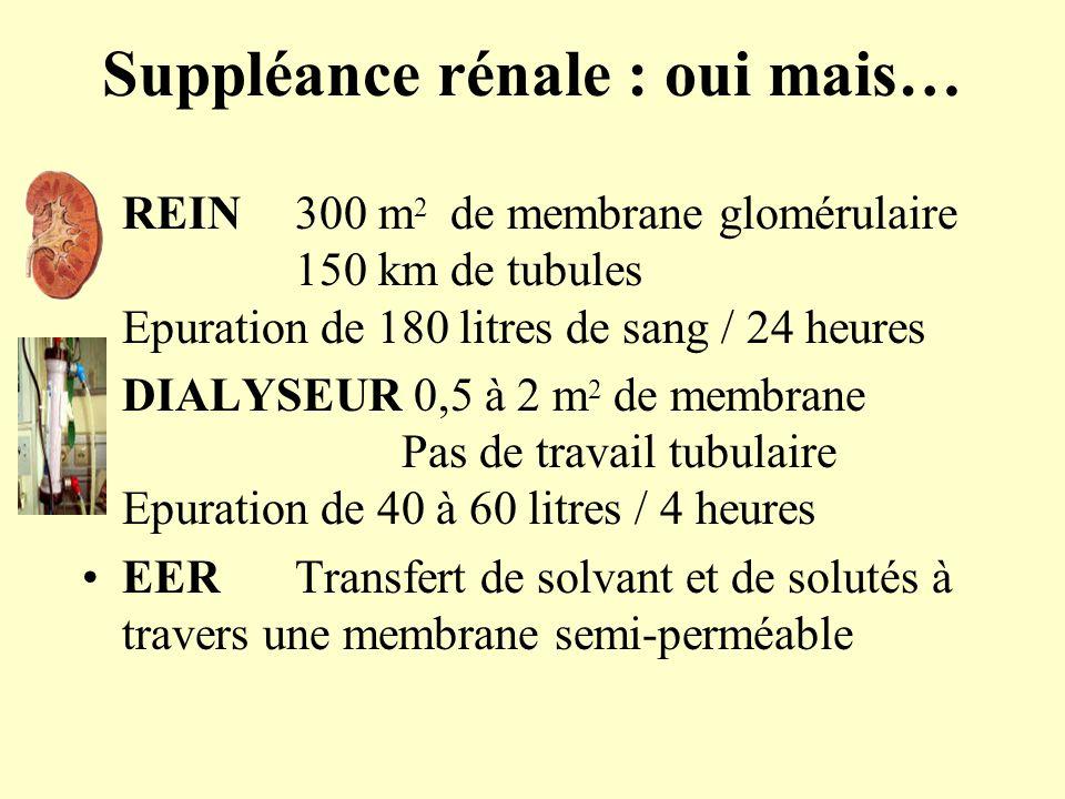 Suppléance rénale : oui mais… REIN300 m 2 de membrane glomérulaire 150 km de tubules Epuration de 180 litres de sang / 24 heures DIALYSEUR 0,5 à 2 m 2