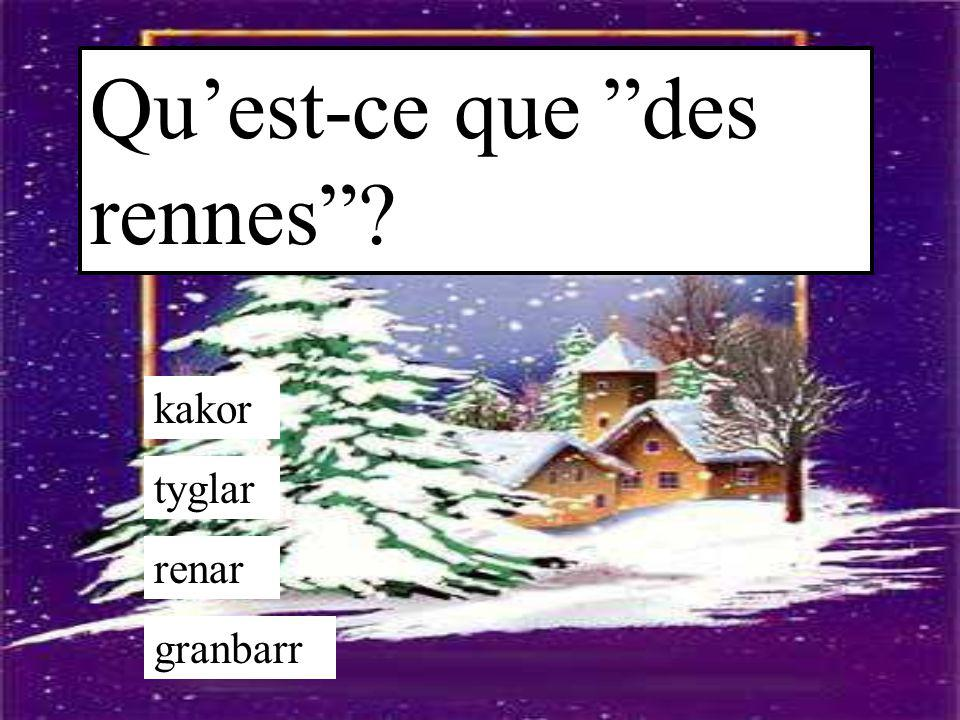 "Qu'est-ce que ""des rennes""? kakor tyglar renar granbarr"