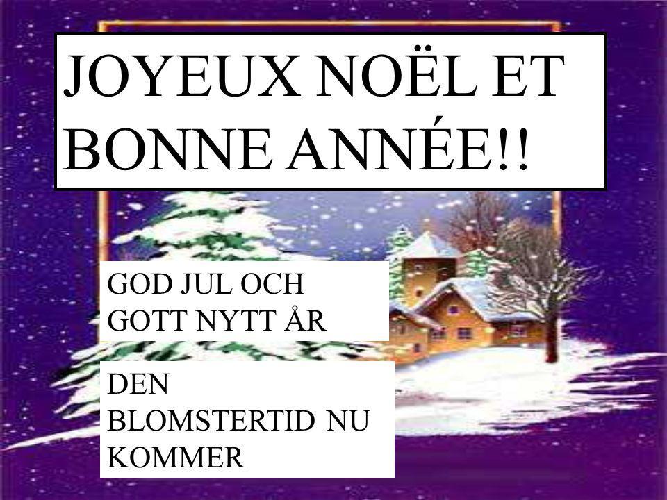 JOYEUX NOËL ET BONNE ANNÉE!! GOD JUL OCH GOTT NYTT ÅR DEN BLOMSTERTID NU KOMMER