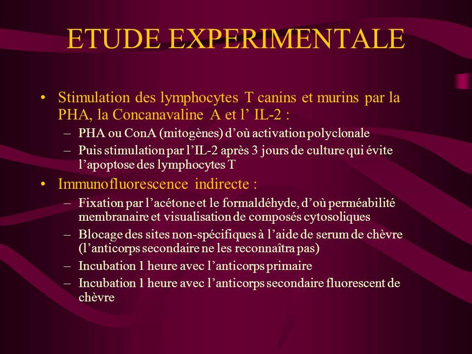 ETUDE EXPERIMENTALE Coloration au May-Grünwald et Giemsa : –Colorant de May-Grünwald (fixation 3 min) –Eau distillée tamponnée pH 7,2 (rinçage 1 min) –Colorant de Giemsa (coloration pendant 20 min) Coloration des estérases non-spécifiques : –Hydrolyse de l'alpha-naphtylbutyrate en composé rouge par les estérases –Contre-coloration en bleu par le vert de méthyle –Les cellules monocytes et monocytoïdes sont rouges –Les lymphocytes apparaissent bleus Cytochimie