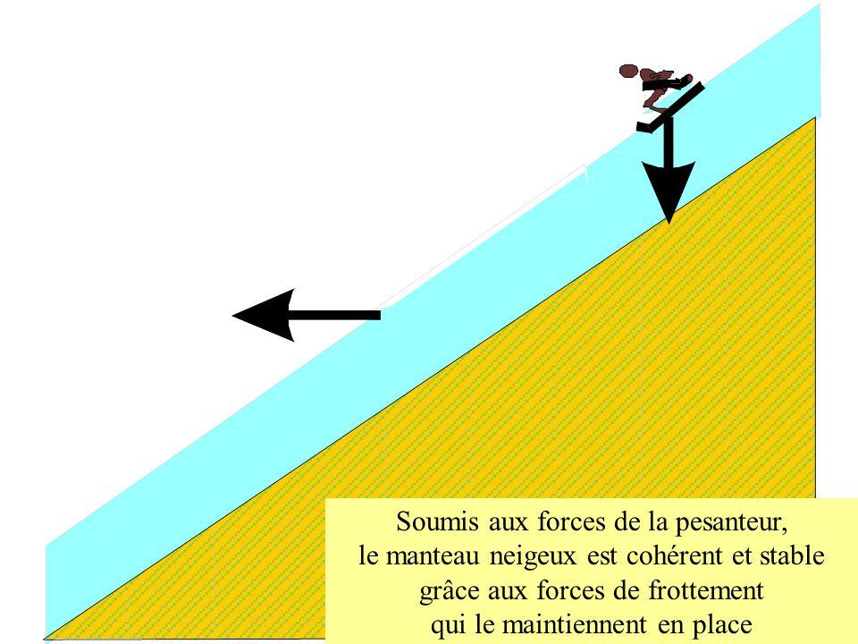 Soumis aux forces de la pesanteur, le manteau neigeux est cohérent et stable grâce aux forces de frottement qui le maintiennent en place