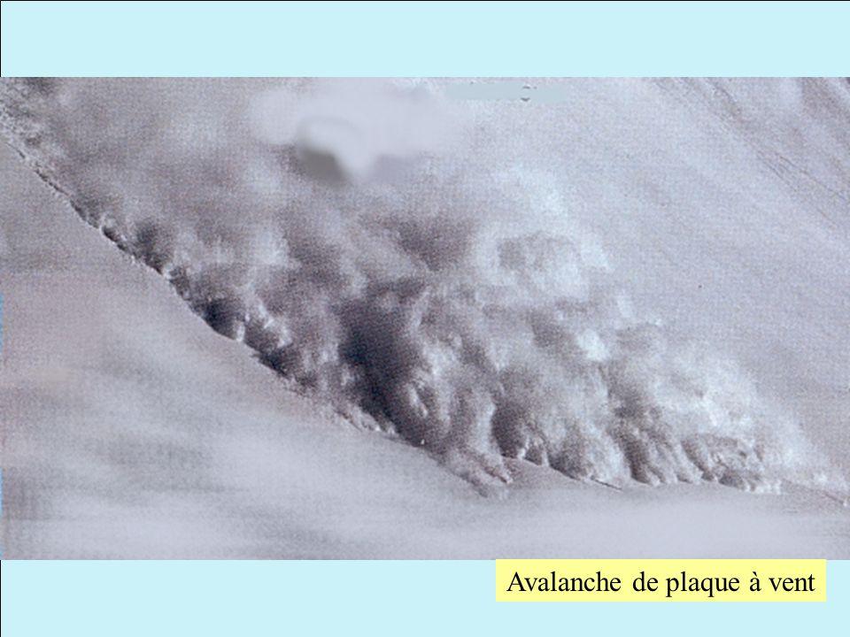 Avalanche de plaque à vent