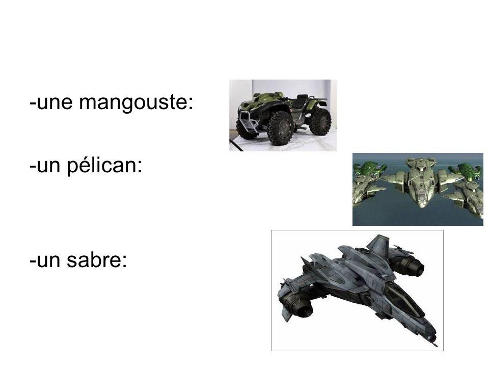 -une mangouste: -un pélican: -un sabre: