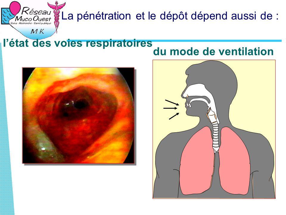 La pénétration et le dépôt dépend aussi de : l'état des voies respiratoires du mode de ventilation