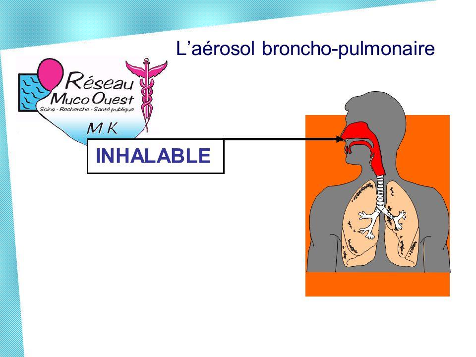 L'aérosol broncho-pulmonaire INHALABLE