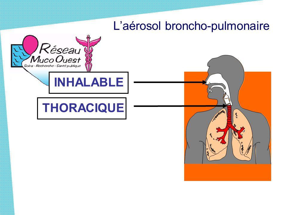 THORACIQUE L'aérosol broncho-pulmonaire