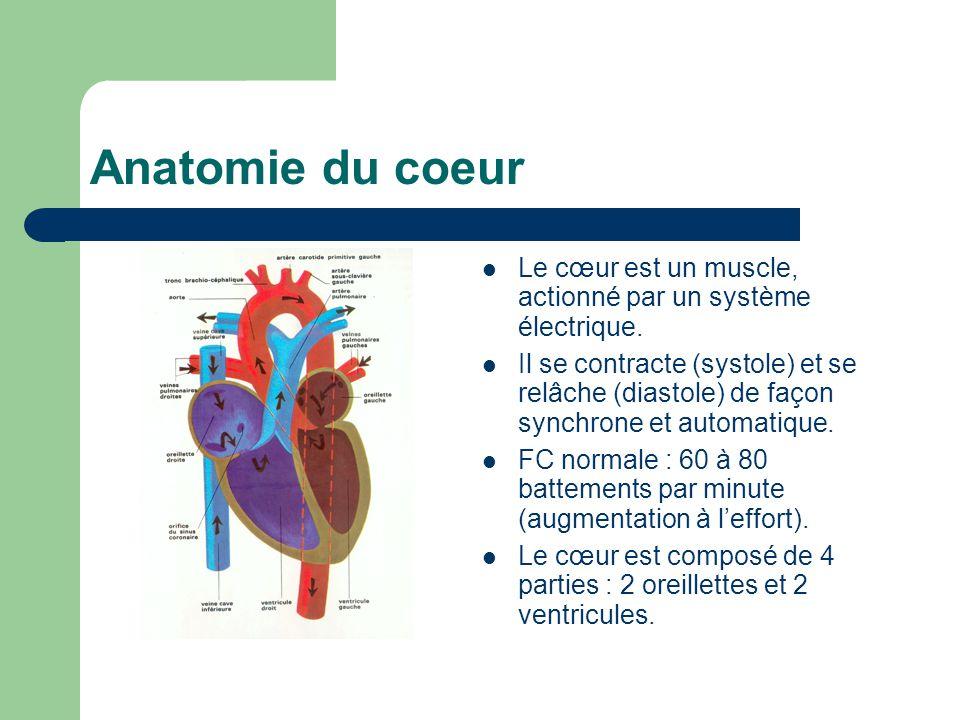 Anatomie du coeur Le cœur est un muscle, actionné par un système électrique.