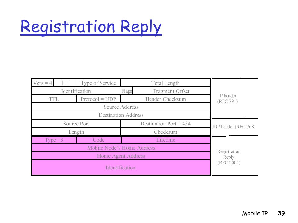 Mobile IP39 Registration Reply
