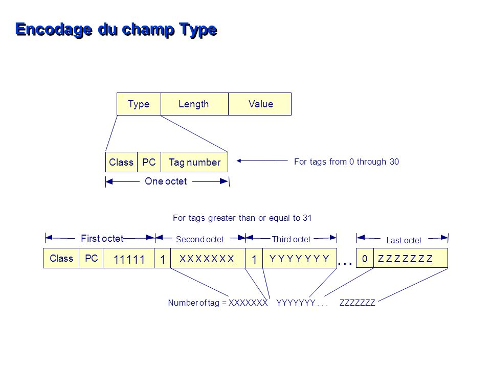 Encodage du champ Type 1 1 1 1 1 For tags greater than or equal to 31 11...