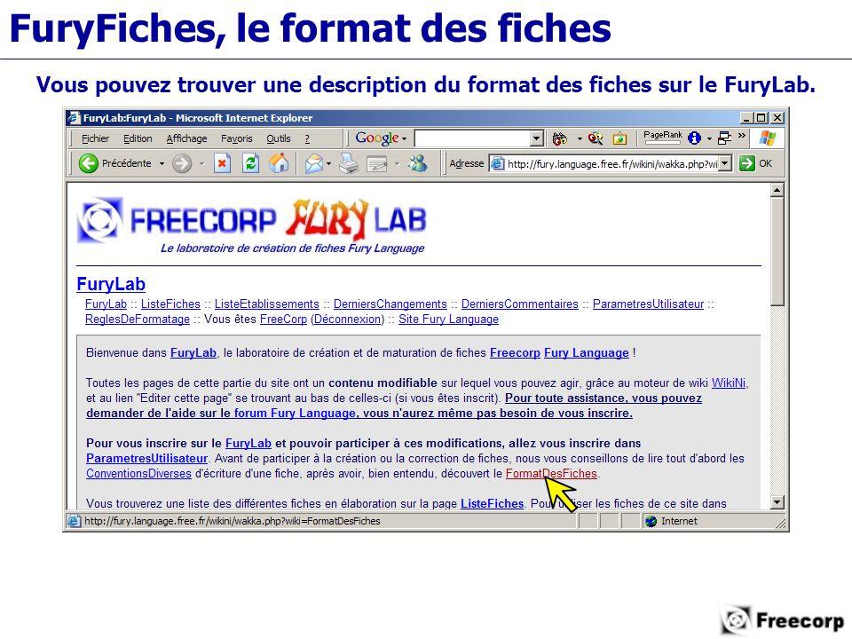 FuryFiches, le format des fiches Vous pouvez trouver une description du format des fiches sur le FuryLab.