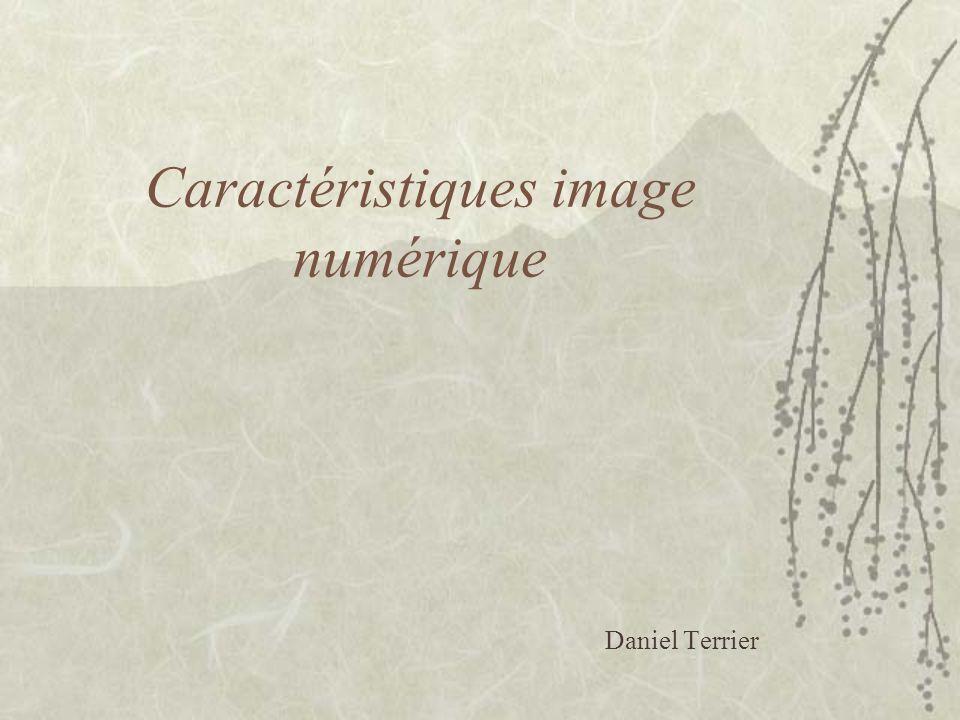 Caractéristiques image numérique Daniel Terrier