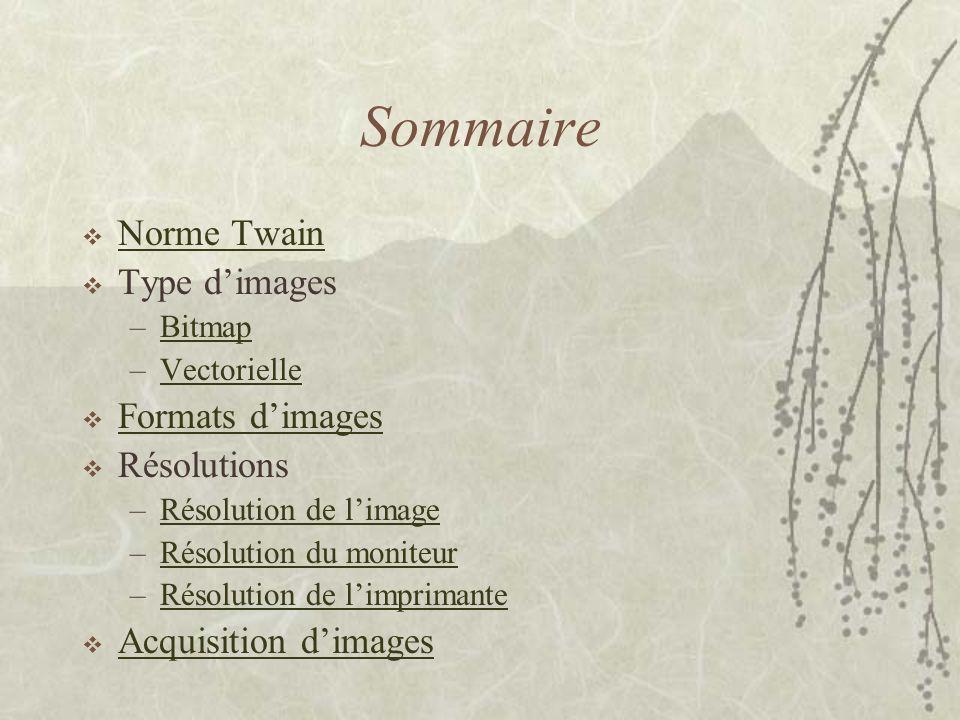 Sommaire  Norme Twain Norme Twain  Type d'images –BitmapBitmap –VectorielleVectorielle  Formats d'images Formats d'images  Résolutions –Résolution