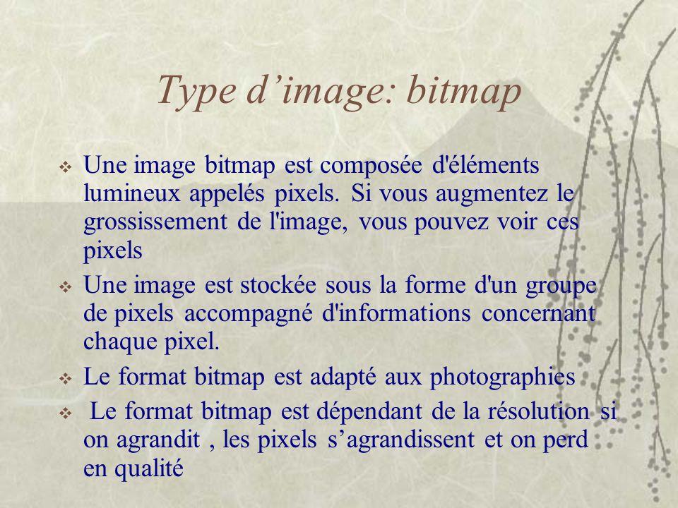 Type d'image: bitmap  Une image bitmap est composée d'éléments lumineux appelés pixels. Si vous augmentez le grossissement de l'image, vous pouvez vo