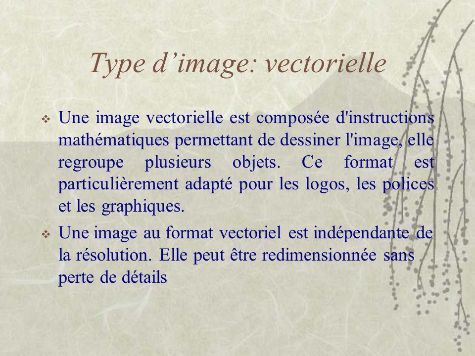Type d'image: vectorielle  Une image vectorielle est composée d'instructions mathématiques permettant de dessiner l'image, elle regroupe plusieurs ob