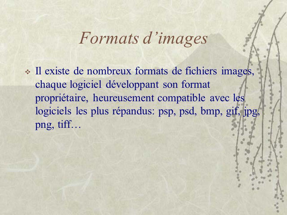 Formats d'images  Il existe de nombreux formats de fichiers images, chaque logiciel développant son format propriétaire, heureusement compatible avec
