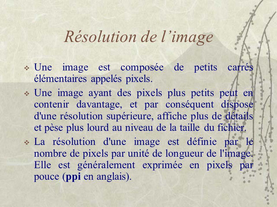 Résolution de l'image  Une image est composée de petits carrés élémentaires appelés pixels.  Une image ayant des pixels plus petits peut en contenir