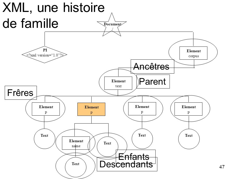 47 Document / PI Element corpus Element text Element p Element p Element p Element p Text Element name Text Frêres Parent Enfants Descendants Ancêtres XML, une histoire de famille