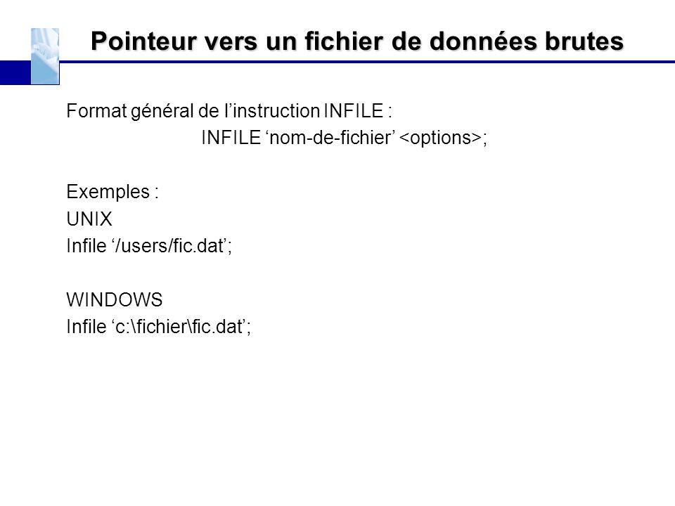 Pointeur vers un fichier de données brutes Format général de l'instruction INFILE : INFILE 'nom-de-fichier' ; Exemples : UNIX Infile '/users/fic.dat';