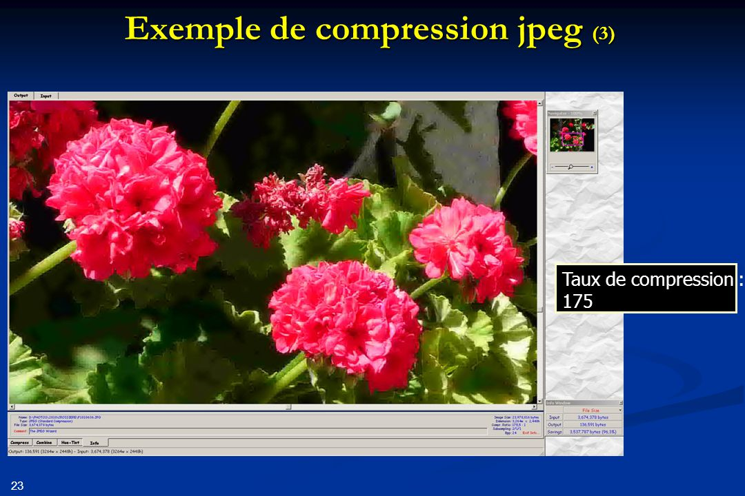 23 Exemple de compression jpeg (3) Taux de compression : 175