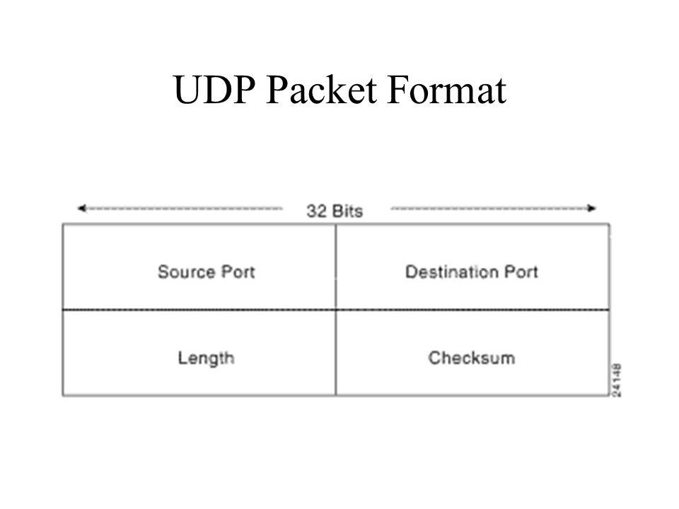 UDP Packet Format