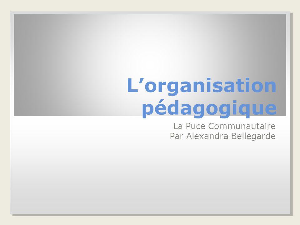 L'organisation pédagogique La Puce Communautaire Par Alexandra Bellegarde