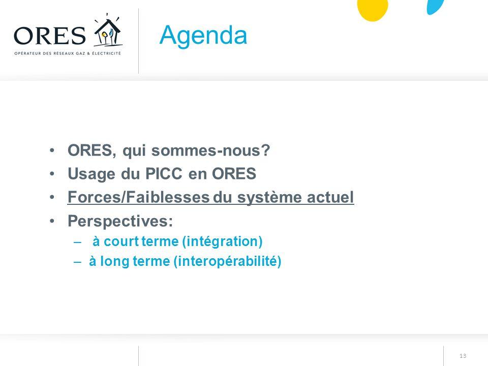13 ORES, qui sommes-nous? Usage du PICC en ORES Forces/Faiblesses du système actuel Perspectives: – à court terme (intégration) –à long terme (interop