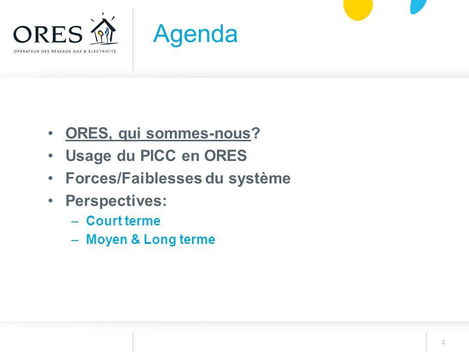 2 ORES, qui sommes-nous? Usage du PICC en ORES Forces/Faiblesses du système Perspectives: –Court terme –Moyen & Long terme Agenda