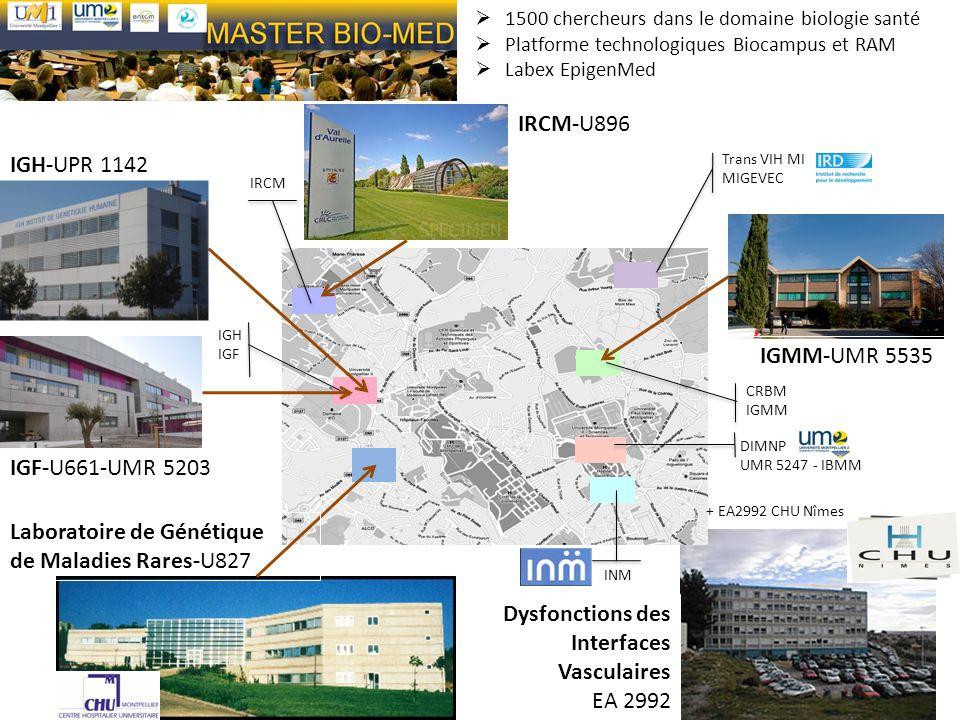 IGH-UPR 1142 IGF-U661-UMR 5203 Trans VIH MI MIGEVEC CRBM IGMM DIMNP UMR 5247 - IBMM INM IRCM IGH IGF IRCM-U896 + EA2992 CHU Nîmes IGMM-UMR 5535 Dysfon