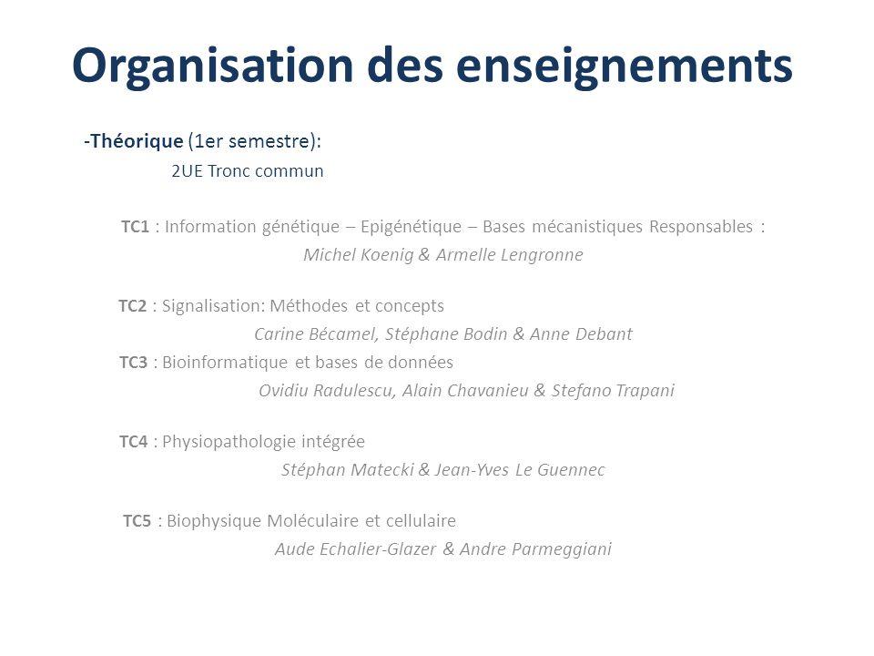 Organisation des enseignements -Théorique (1er semestre): 2UE Tronc commun TC1 : Information génétique – Epigénétique – Bases mécanistiques Responsabl