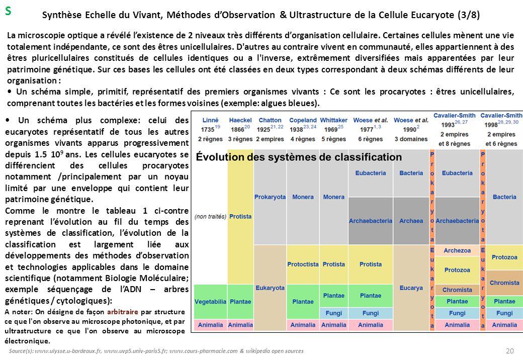Synthèse Echelle du Vivant, Méthodes d'Observation & Ultrastructure de la Cellule Eucaryote (3/8) Un schéma plus complexe: celui des eucaryotes représ
