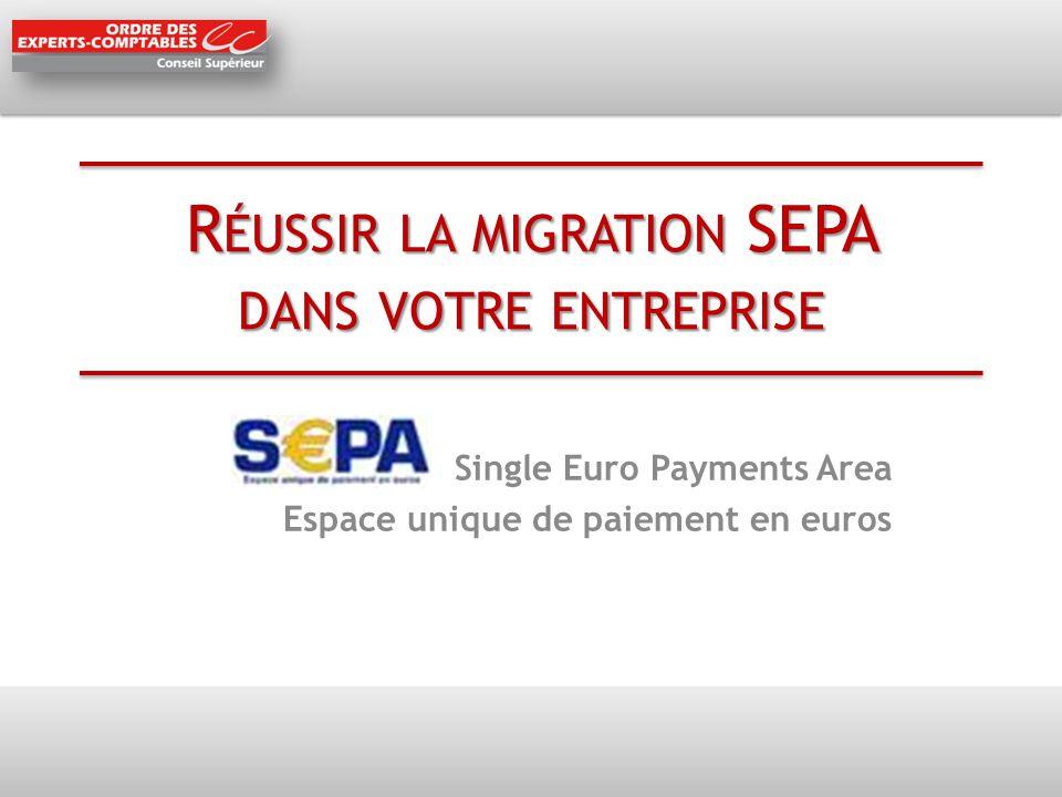 R ÉUSSIR LA MIGRATION SEPA DANS VOTRE ENTREPRISE Single Euro Payments Area Espace unique de paiement en euros
