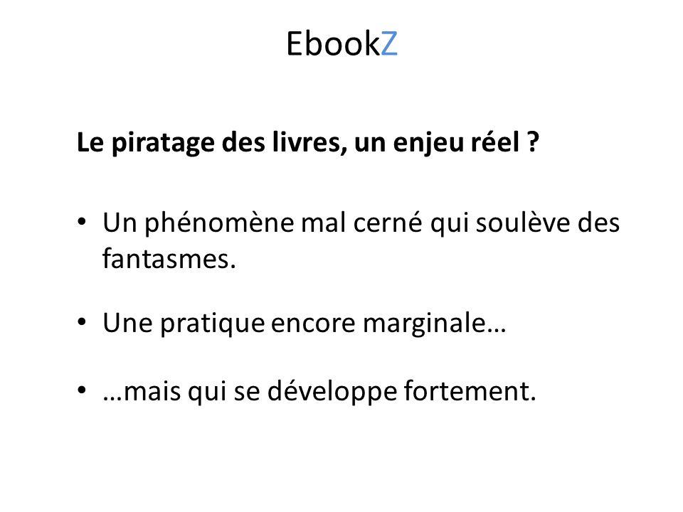 EbookZ Le piratage des livres, un enjeu réel . Un phénomène mal cerné qui soulève des fantasmes.