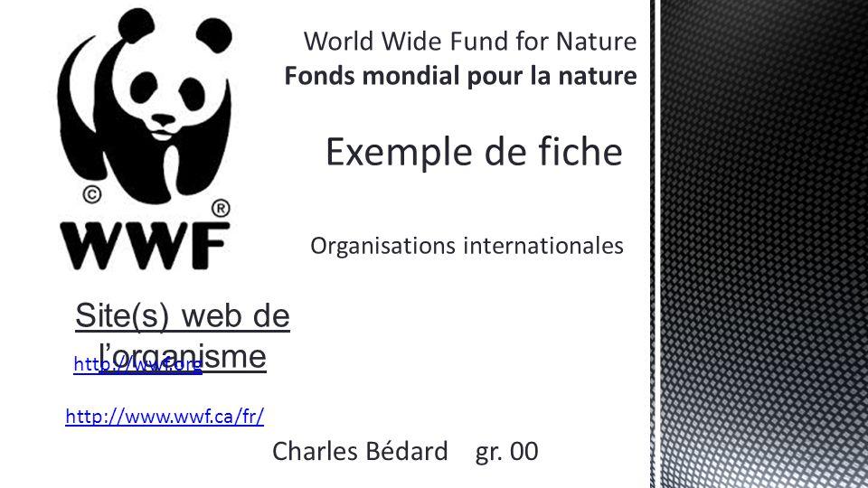 http://www.wwf.ca/fr/conservation/forests_freshwater/votre_empreinte_en_eau/ Site analysé : http://worldwildlife.org/ http://worldwildlife.org/ « Notre empreinte en eau comprend beaucoup plus que l'eau que boivent et utilisent nos ménages.