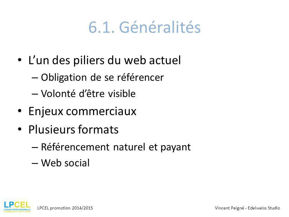 6.1. Généralités L'un des piliers du web actuel – Obligation de se référencer – Volonté d'être visible Enjeux commerciaux Plusieurs formats – Référenc