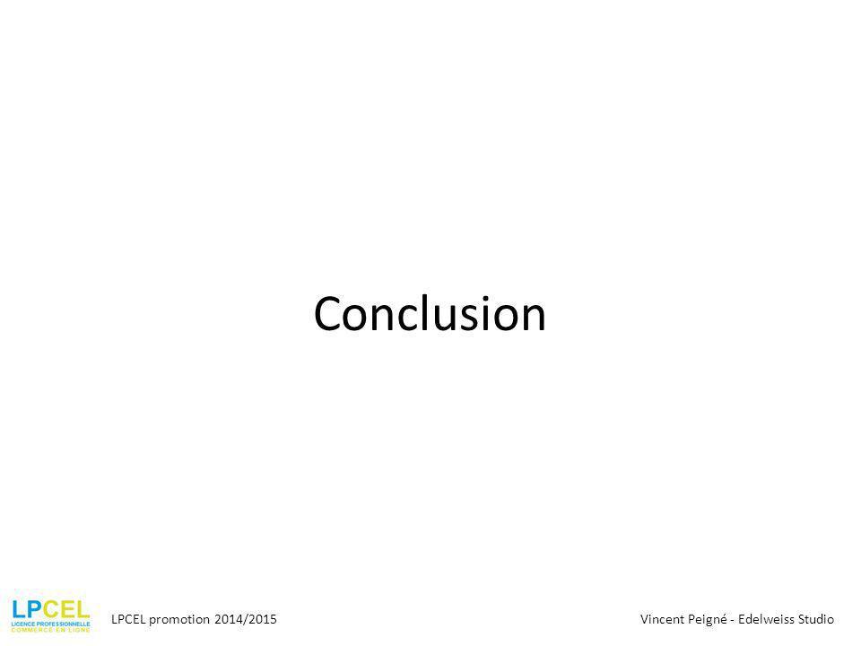 Conclusion LPCEL promotion 2014/2015Vincent Peigné - Edelweiss Studio