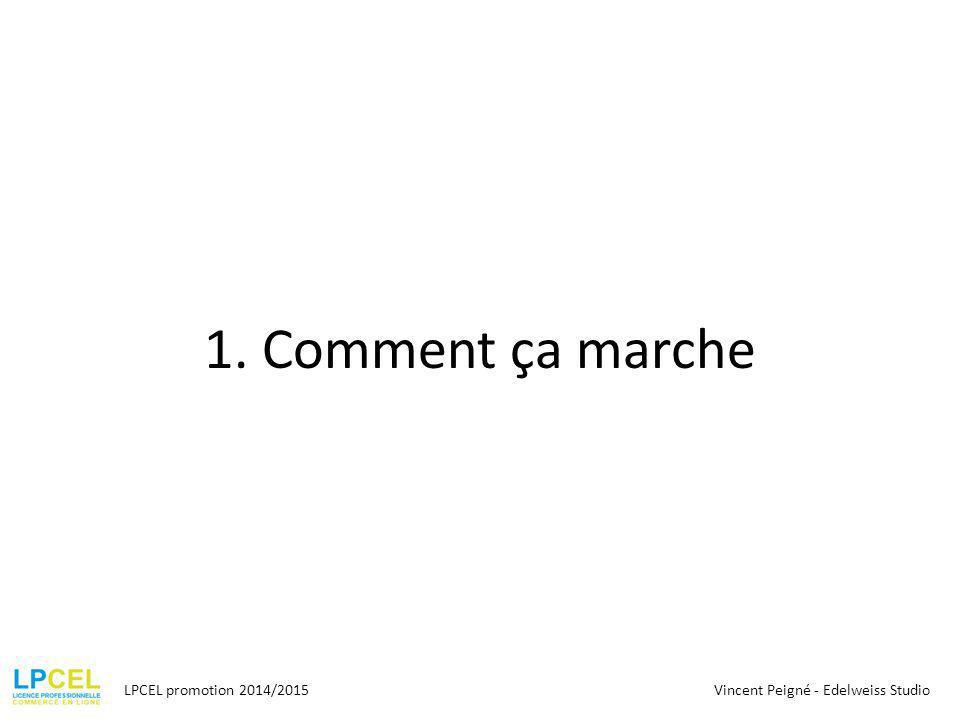 1. Comment ça marche LPCEL promotion 2014/2015Vincent Peigné - Edelweiss Studio