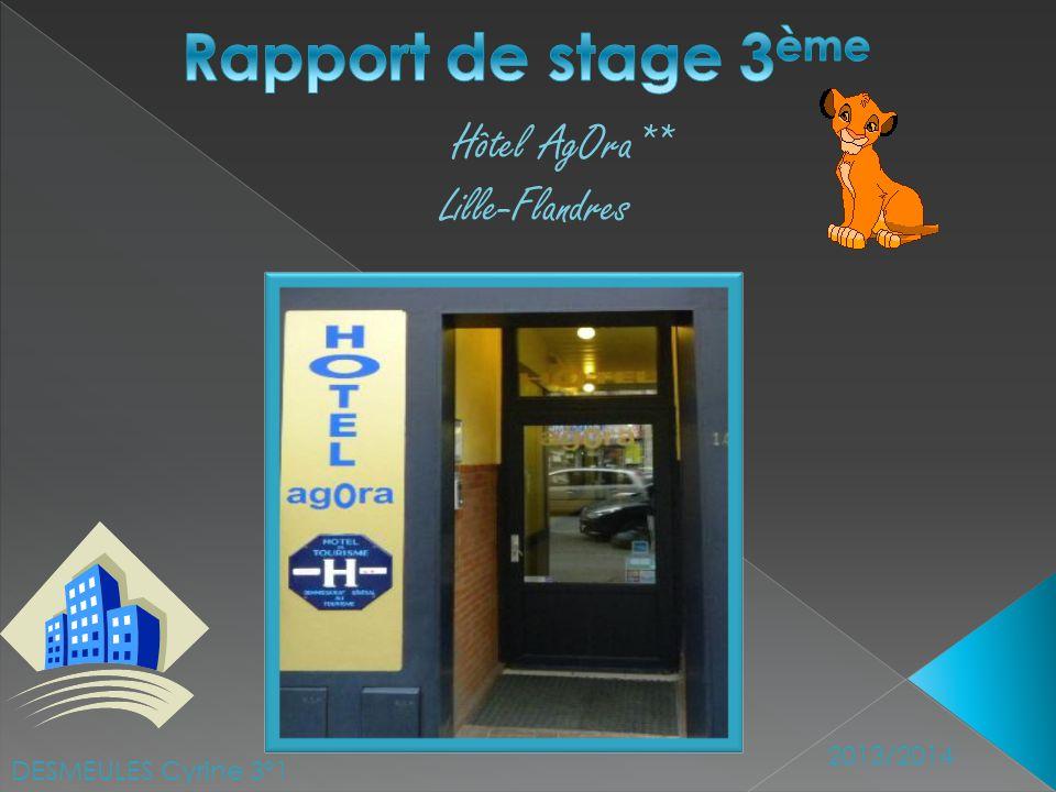 DESMEULES Cyrine 3°1 2013/2014 Hôtel AgOra** Lille-Flandres