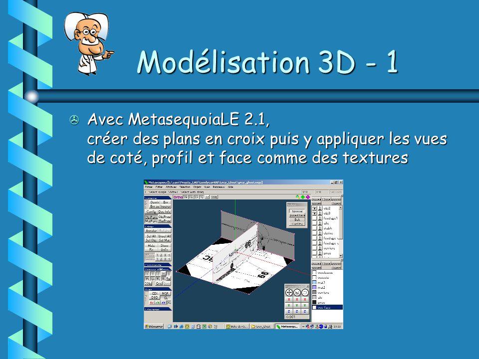 Modélisation 3D - 1 > Avec MetasequoiaLE 2.1, créer des plans en croix puis y appliquer les vues de coté, profil et face comme des textures