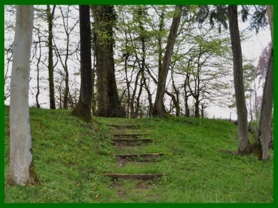 Le Quesnoy, c'est aussi la coulée verte de la Deûle avec ses chemins de promenades, ses parcs publics un espace de respiration.