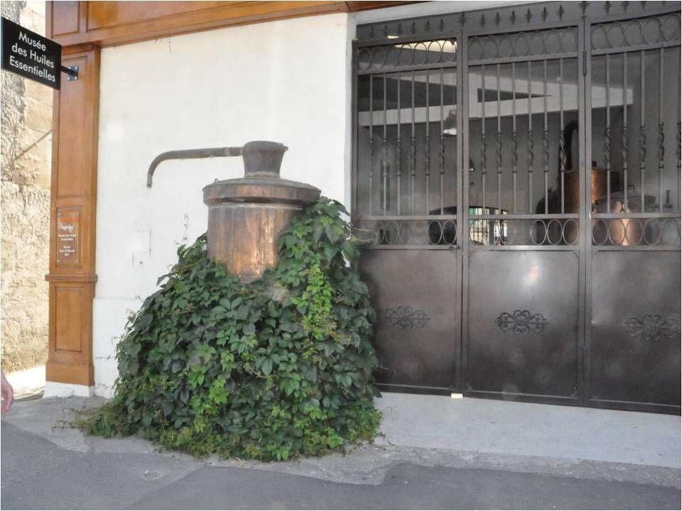 Installé à Saint Rémy de Provence le Laboratoire Florame est devenu au fil Des années, une référence incontournable Dans l'univers des huiles essentielles biologiques