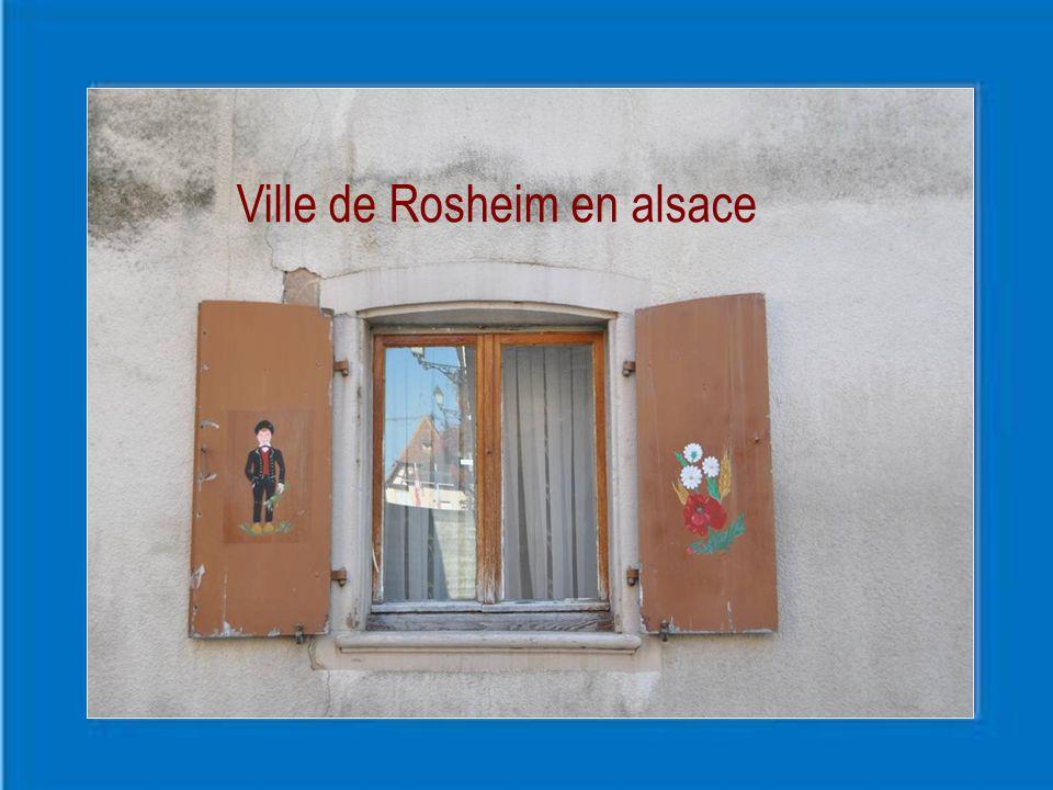 Les armes de Rosheim se blasonnent ainsi : D'un rouge boutonné d'or et aux pétales verts La rose à cinq pétales de Rosheim ferait Allusion à son nom qui représente une rose