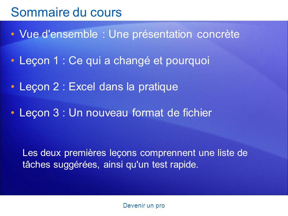 Devenir un pro Sommaire du cours Vue d'ensemble : Une présentation concrète Leçon 1 : Ce qui a changé et pourquoi Leçon 2 : Excel dans la pratique Leç