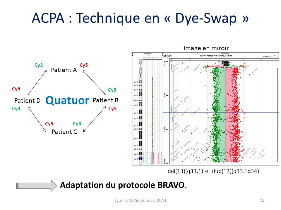 Patient A Patient B Patient D Patient C Cy5 Cy3 Image en miroir Quatuor Adaptation du protocole BRAVO. del(13)(q33.1) et dup(13)(q33.1q34) 15Lyon le 1
