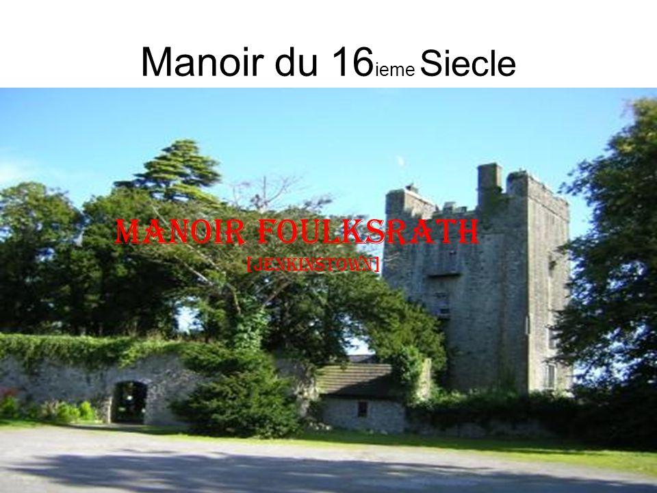 Manoir du 16 ieme Siecle Manoir Foulksrath [jenkinstown]