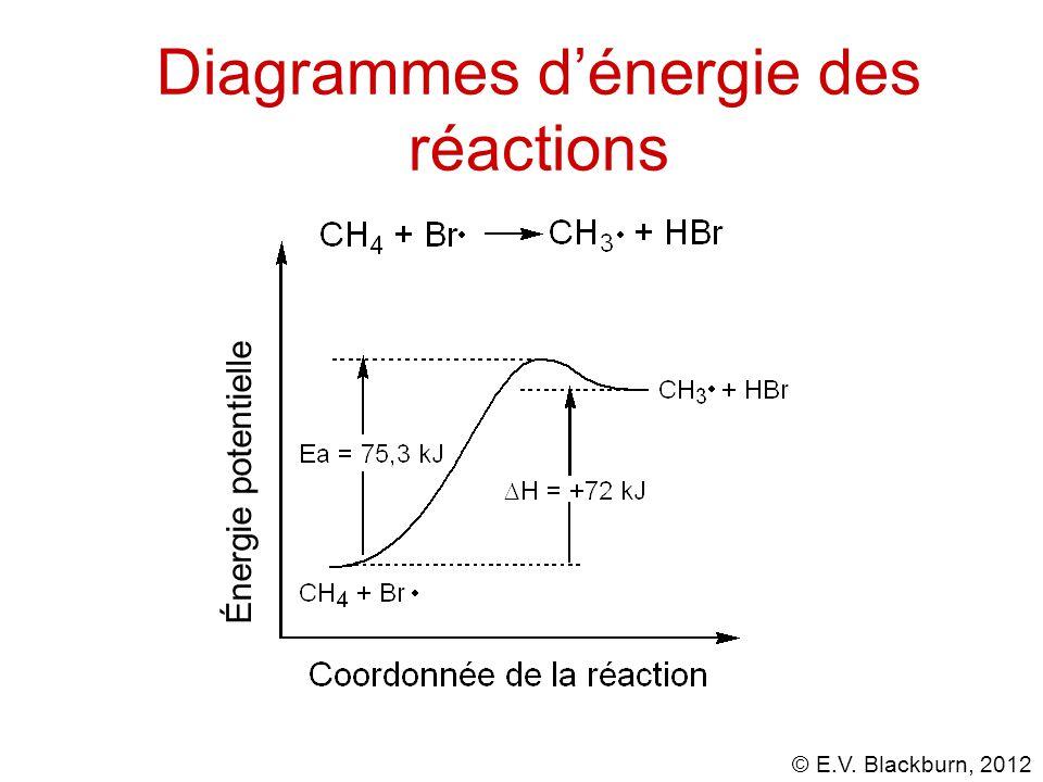 © E.V. Blackburn, 2012 Énergie potentielle Diagrammes d'énergie des réactions