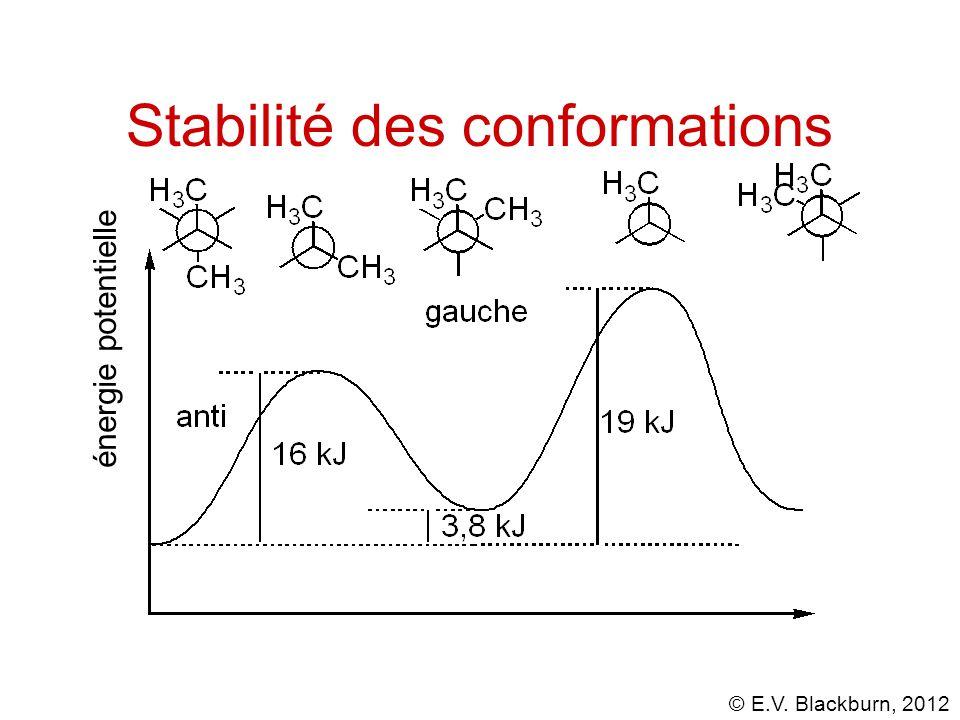 © E.V. Blackburn, 2012 énergie potentielle Stabilité des conformations