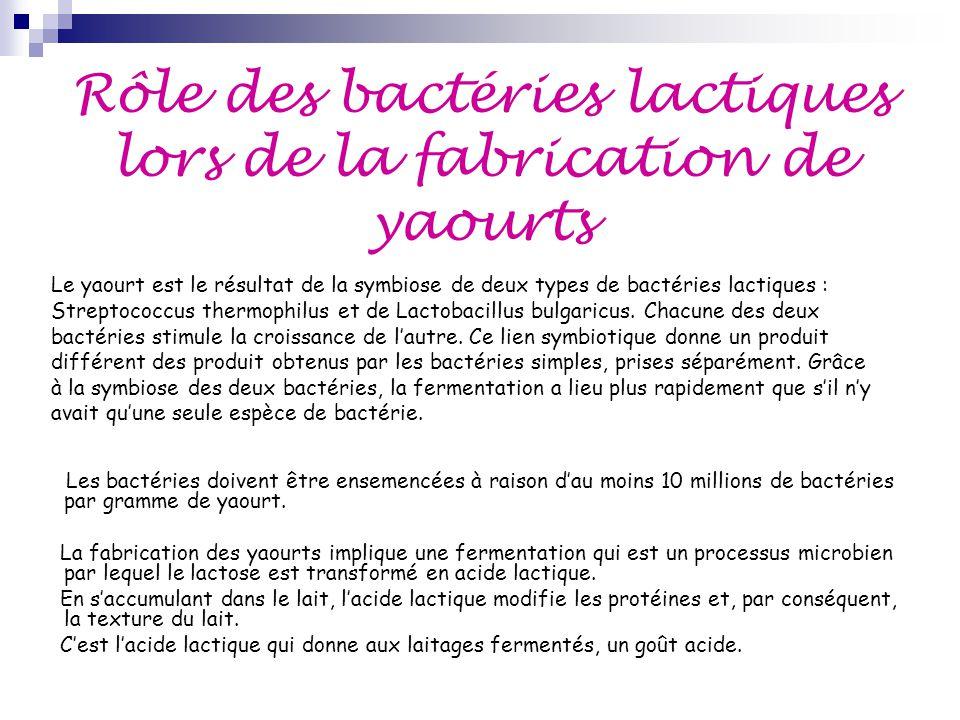 Rôle des bactéries lactiques lors de la fabrication de yaourts Les bactéries doivent être ensemencées à raison d'au moins 10 millions de bactéries par