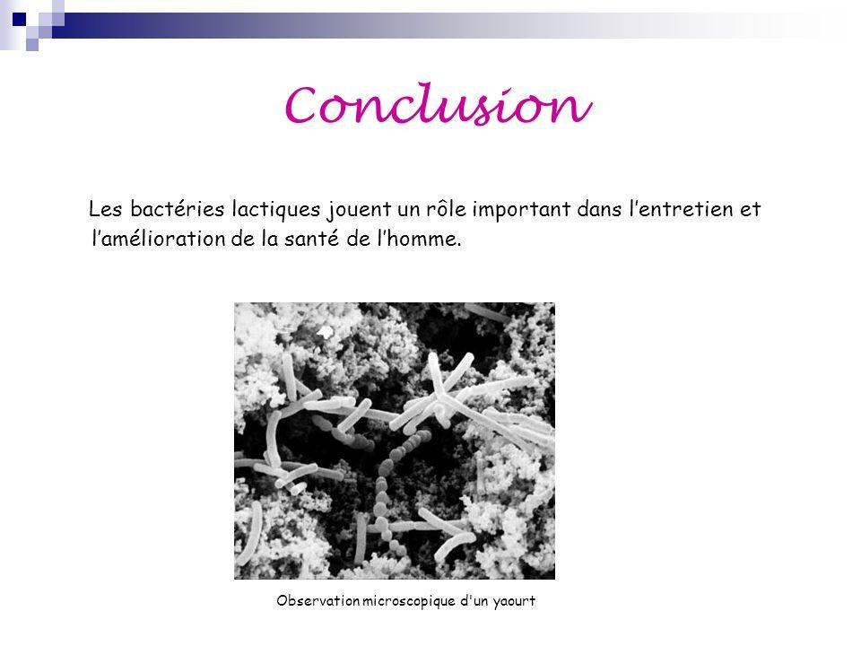 Conclusion Les bactéries lactiques jouent un rôle important dans l'entretien et l'amélioration de la santé de l'homme. Observation microscopique d'un